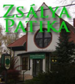 1538-20130727020907-zsalya_gyogyszertar
