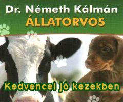 1538-20140226031956-NemethKalmanallatorv240x140minalunk