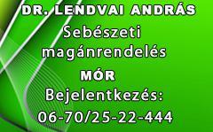 1538-20160415110853-DrLendvai240esMinalunkjobb