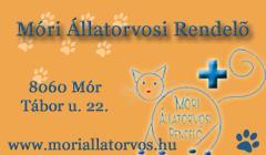 1804-20140211051707-moriallatorvosirend