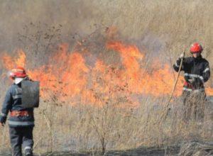 Két helyen égett az aljnövényzet Réde és Bakonybánk között