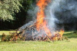 Ezentúl nem lehet növényi hulladékot égetni Székesfehérváron