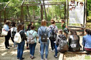 Idén is folytatódott az egyetemek és a Budakeszi Vadaspark együttműködése