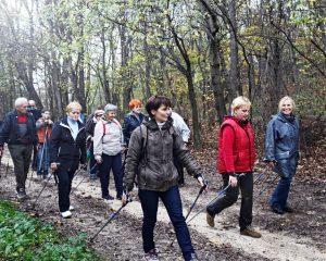 A nordic walking varázsa
