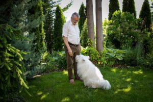 Csányi Vilmos: A kutya még nem ember, de már nem is állat